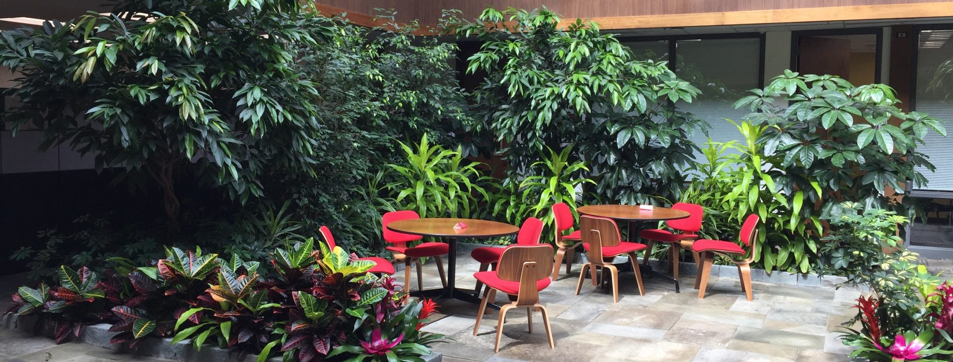 Stunning lobbies, offices, and public spaces showcase your business